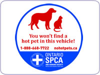 http://www.simpledeals.com/wp-content/uploads/2012/09/no-hot-pet-decal.jpg